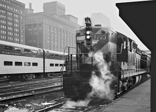 ss chicago 50