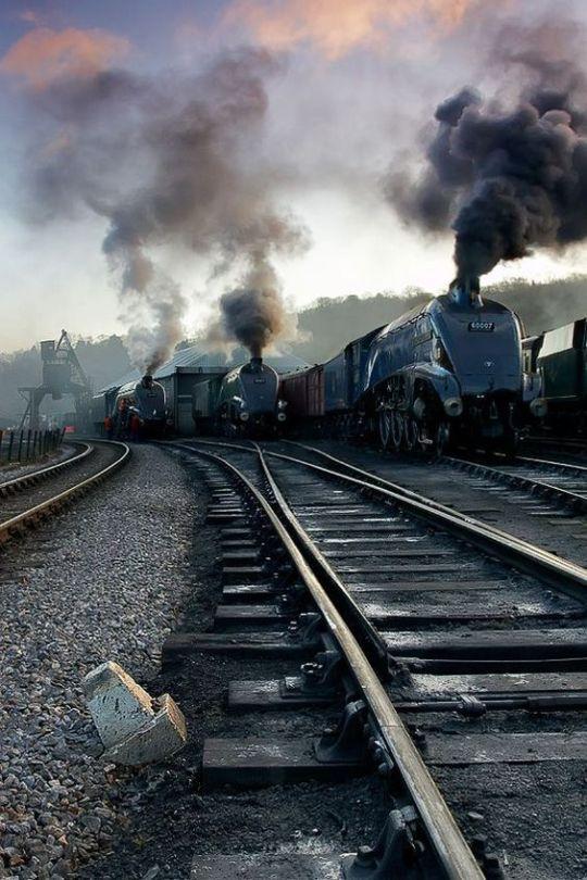 ss trains