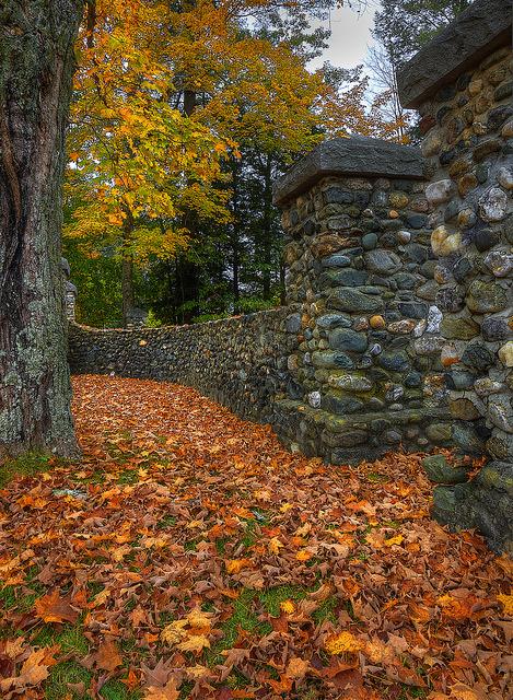 n autumn