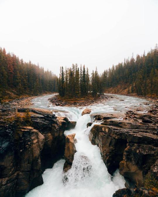 n sunwapta falls canada