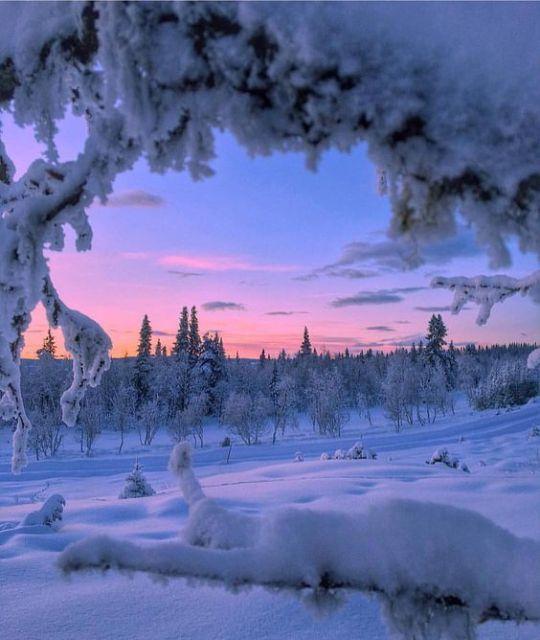 n winter2
