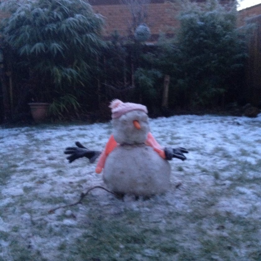 n snowy gerry