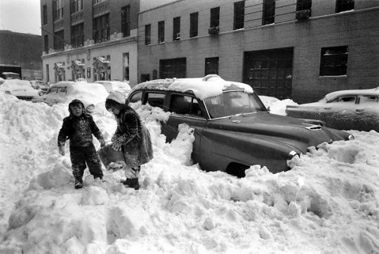ss ny 1956
