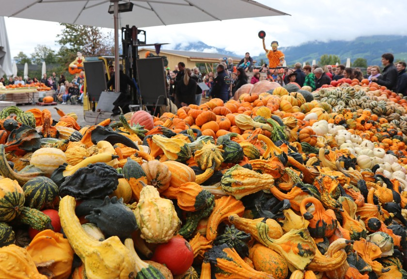 n pumpkin fair switzerland