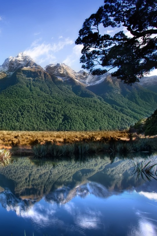 n mirror lakes nz