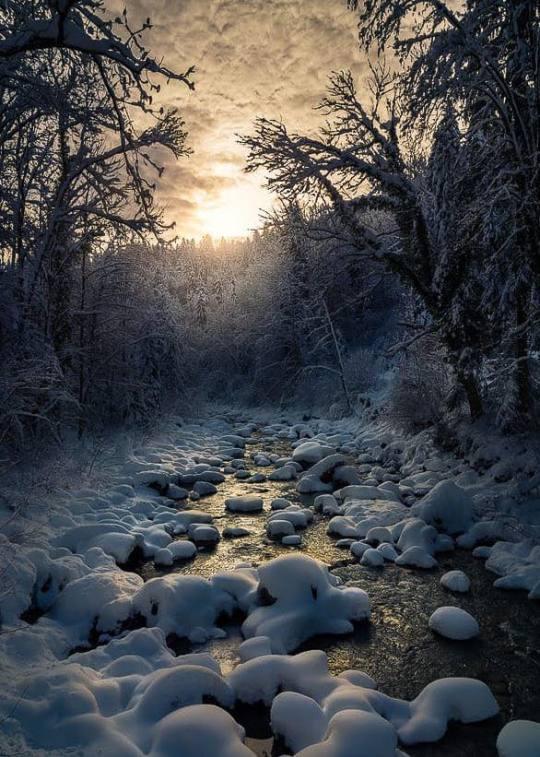 n winter