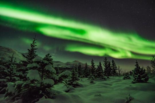 Tromso nw