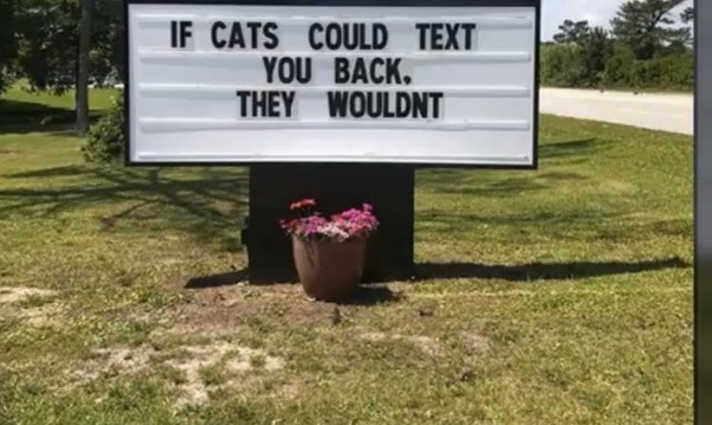 cats jopke