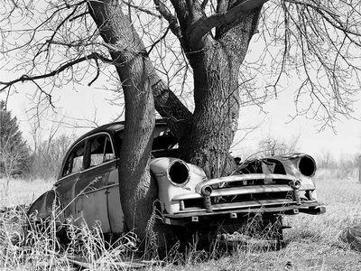 lockdown car...